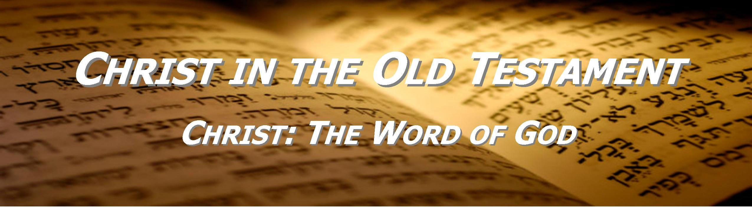 the word of god Ow important is god's word to you when we humble ourselves before scripture,  acknowledging that it has been given to us by the living god,.